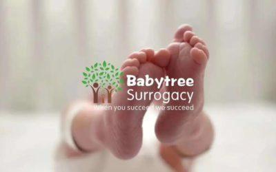 独家分享|行业揭秘|您一定要了解的赴美助孕那些事!#美国宝宝树#